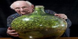 Biljka-u-boci