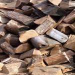 Cena ogrevnog drveta dostigla  50 evra po metru kubnom
