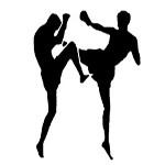 Vranjski kik bokser, Dalibor Antić izgubio profi meč na poene u Beču