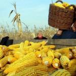 Poljoprivrednici će prve subvencije dobiti početkom marta